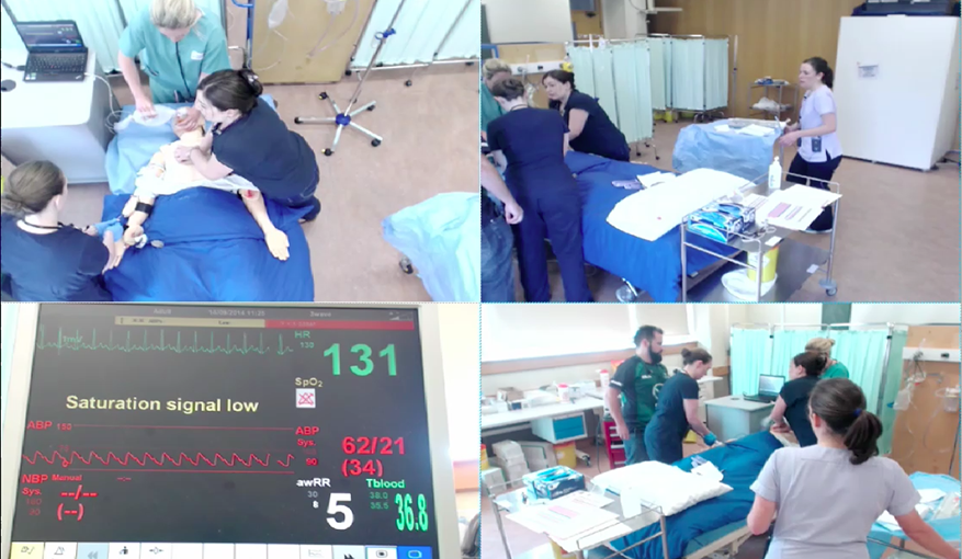 Sepsis Simulation Training for Healthcare Workers