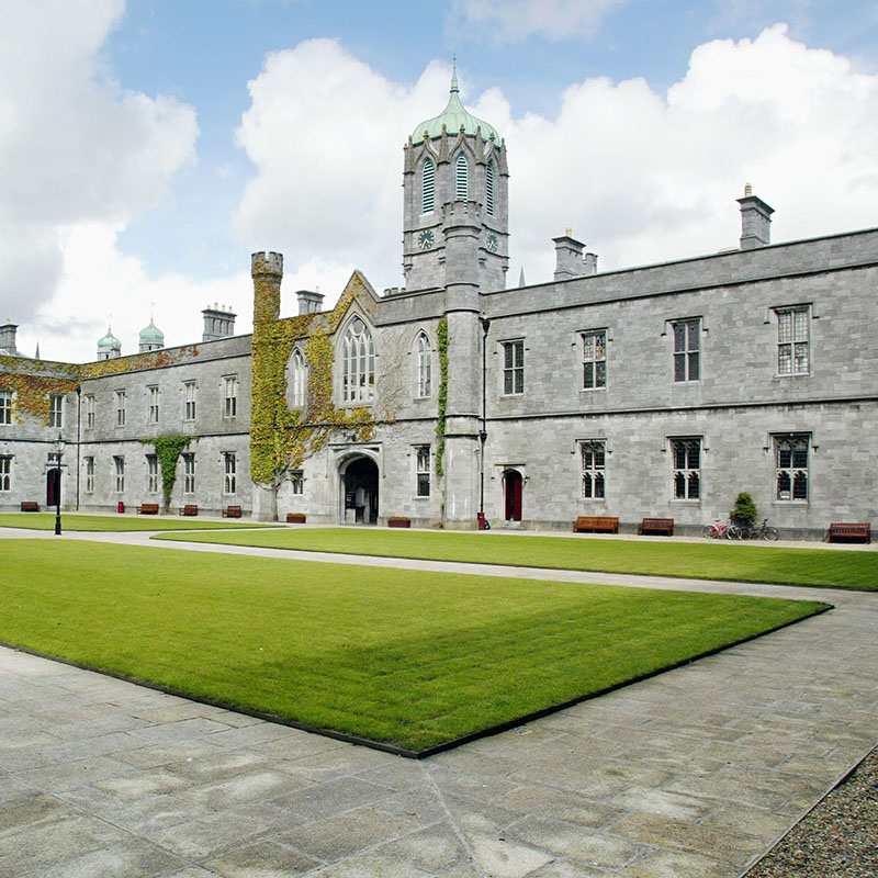 Distance Learning Healthcare Simulation and Patient Safety Programmes at National University of Ireland, Galway